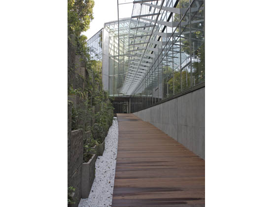 Ambassade de France au Japon/【Approach】The walls of the outside corridor to the entrance are covered with vegetation.