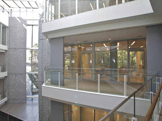 Ambassade de France au Japon/【Office area (from the hallway)】The building makes ample use of glass and strives for harmony with nature.
